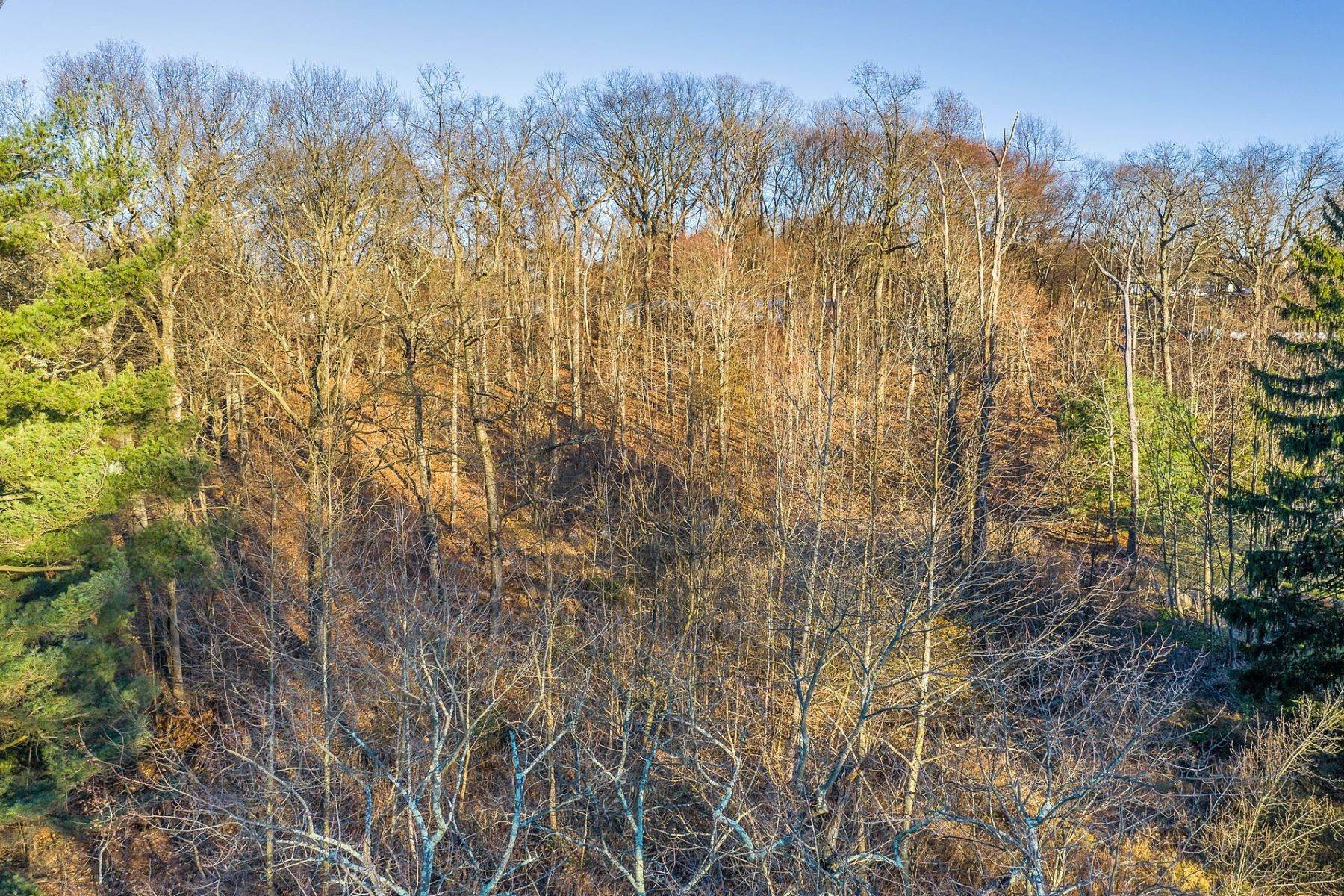 Land for Sale at Land - 64 Ridgeview Terrace Wayne NJ 07470 64 Ridgeview Terrace Wayne, New Jersey 07470 United States